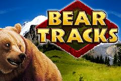 Игровой автомат на деньги Bear Tracks